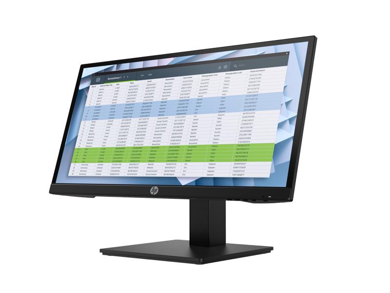 HP P22h G4 FHD Monitor 5