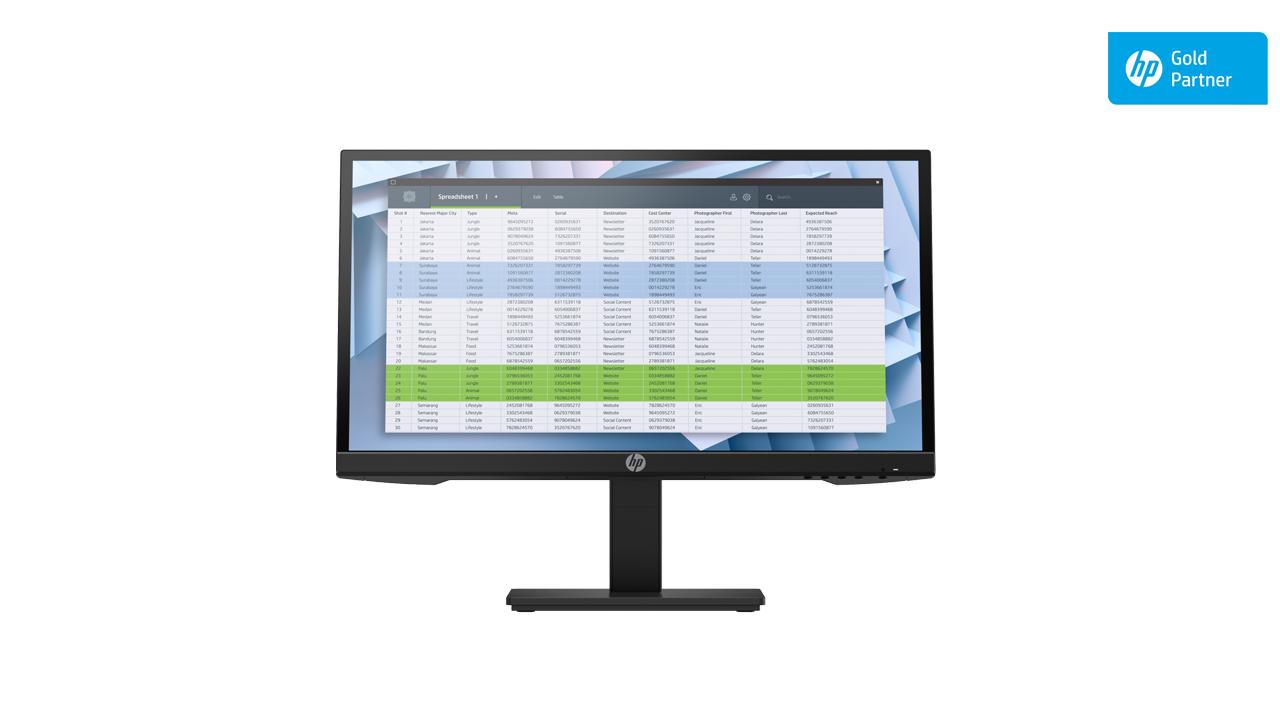 HP P22h G4 FHD Monitor 1